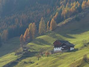 Bauernhaus am Berg